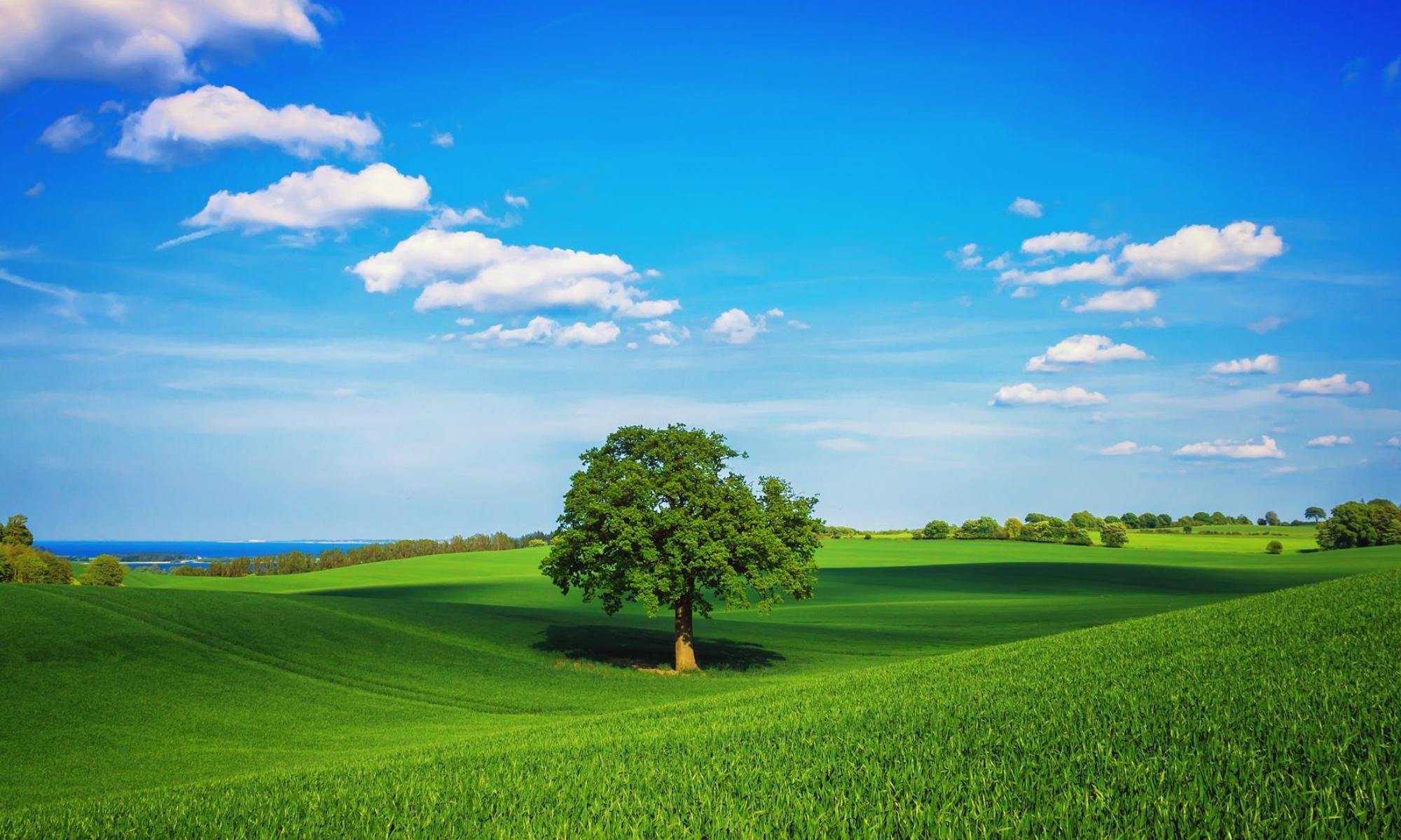 Studio Tecnico di  ingegneria ambientale e pianificazione territoriale